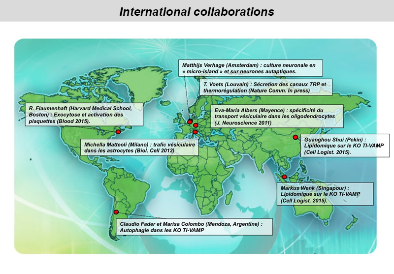 Collab-Inernationales